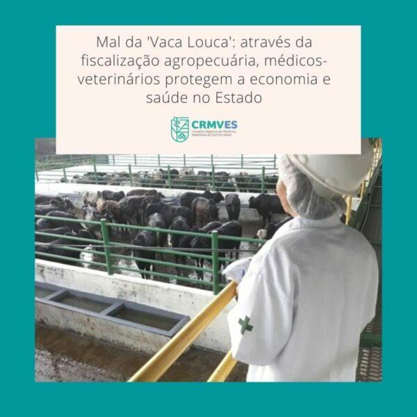 Através da fiscalização agropecuária, Médicos-Veterinários protegem a economia e saúde no Estado